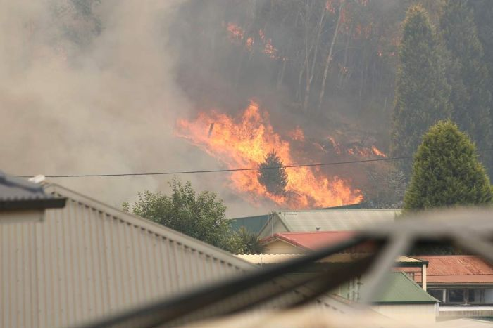 Bright orange flames burn through bushland, just past the tops of suburban houses.